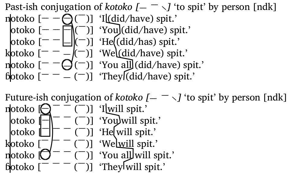 NDK Conjugation 4
